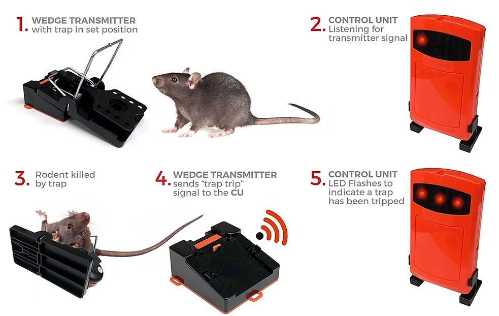 trap technology diagram